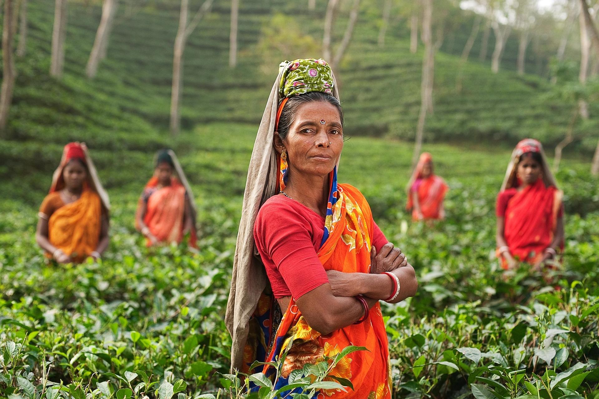 インド人女性の画像