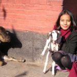 ネパール人と仕事をすることになったら?